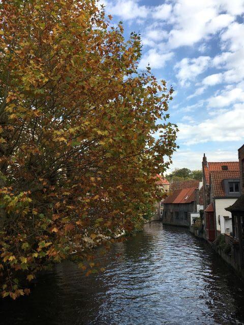 Kulkusalla, Brugge, kanava, syksy
