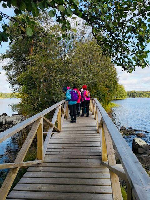 Dorikset, Kyynäräharju, Liesjärvi