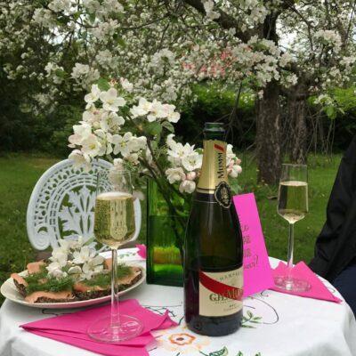 Samppaanjasiskot, Mumm, puutarha, omenapuu kukkii