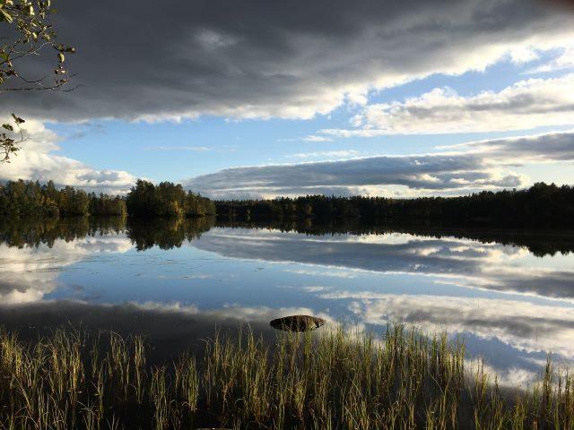 Dorikset, Onnenranta, Liesjärvi, peilityyni