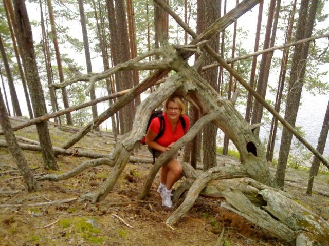 Dorikset, Petkeljärven kansallispuisto, harjumaisema