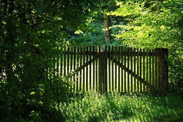 kulkusalla, vanha portti, Pietarin tuliainen